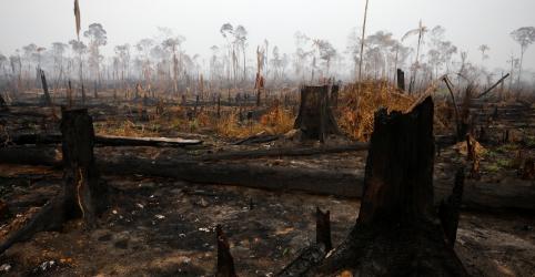 Placeholder - loading - Imagem da notícia Ex-ministros do Meio Ambiente pedirão ao Congresso moratória de projetos que podem incentivar desmatamento