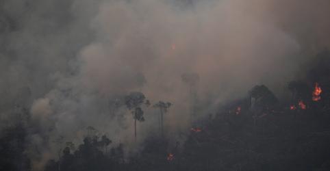 Placeholder - loading - Imagem da notícia Há suspeita de ação orquestrada em queimadas na Amazônia, diz Raquel Dodge