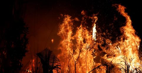 ENTREVISTA-Incêndios na Amazônia representam riscos para saúde de crianças, diz OMS