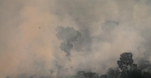 Placeholder - loading - Ministro da Defesa diz que 2019 ficará abaixo de piores anos de queimadas na Amazônia