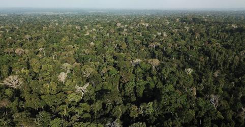 Placeholder - loading - Imagem da notícia Governo faz campanha no Brasil e no exterior para defender soberania na Amazônia