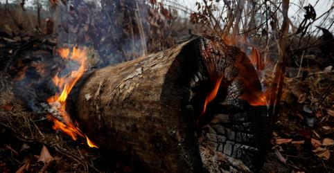 ANÁLISE-Cientistas alertam para incêndios mais intensos na Amazônia