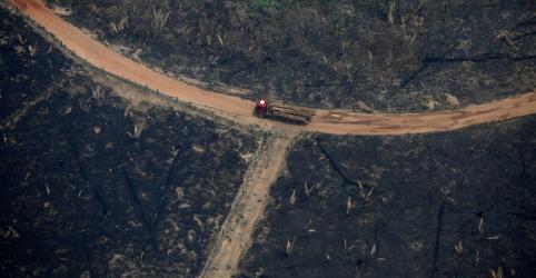 Placeholder - loading - Imagem da notícia Indigenista colaborador da Funai é assassinado em região remota da Amazônia
