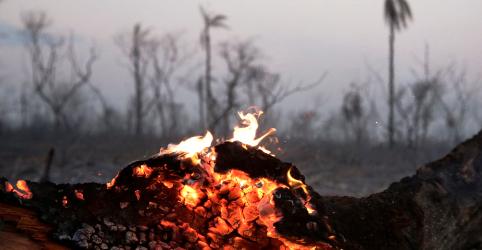 Placeholder - loading - Imagem da notícia Incêndios em florestas da Bolívia colocam iniciativas agrícolas de Evo em xeque