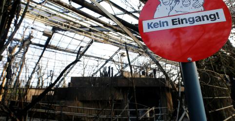 Placeholder - loading - Imagem da notícia Comemoração de Ano Novo causa incêndio em zoológico alemão