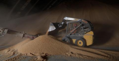 Placeholder - loading - Exportação de milho do Brasil tem recorde de 44,9 mi t em 2019; soja soma 77,9 mi t