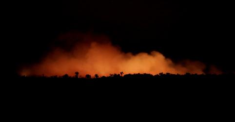Placeholder - loading - Focos de incêndio na Amazônia sobem 30% em 2019 na comparação com 2018, diz Inpe