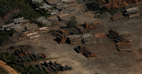 Placeholder - loading - Imagem da notícia Área com avisos de desmatamento na Amazônia sobe 85% em 2019, mostra Inpe