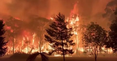 Placeholder - loading - Imagem da notícia 2019 foi o segundo ano mais quente de todos os tempos e haverá clima mais extremo à frente, diz OMM