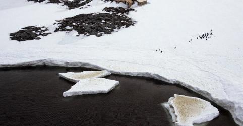 Placeholder - loading - Imagem da notícia Registrada temperatura mais alta da história da Antártida