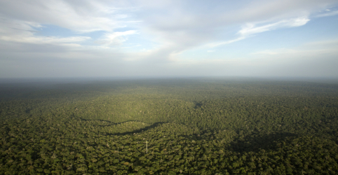 Placeholder - loading - Imagem da notícia PPI avança na área ambiental e passa a incluir 3 florestas nacionais, além de 6 parques