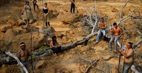 Placeholder - loading - Imagem da notícia Desmatamento em áreas com tribos isoladas cresceu 113% em 2019, aponta relatório