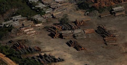 Placeholder - loading - Imagem da notícia EXCLUSIVO-Brasil exportou milhares de carregamentos não autorizados de madeira de porto na Amazônia