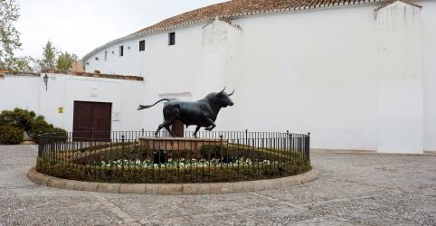 Placeholder - loading - Espanha registra 462 novas mortes por coronavírus durante a noite, diz ministério