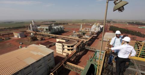 Placeholder - loading - Unica diz que força maior de distribuidoras pode destruir setor de etanol e bioenergia