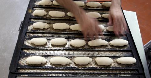 Coronavírus eleva demanda por pães, massas e biscoitos; setor repassará alta do trigo