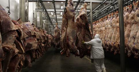 Placeholder - loading - Exportador de carne bovina do Brasil vê recorde em 2020 apesar de coronavírus