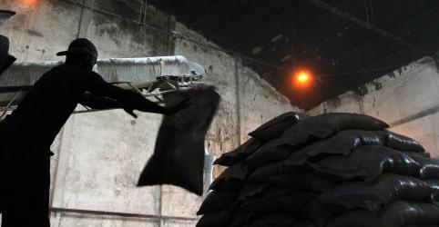 Placeholder - loading - Imagem da notícia Embarque programado de açúcar do Brasil remete a exportação recorde, diz Datagro