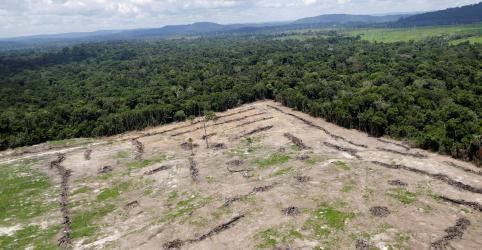 Placeholder - loading - Desmatamento e agropecuária aumentam emissões de gases do efeito estufa no Brasil