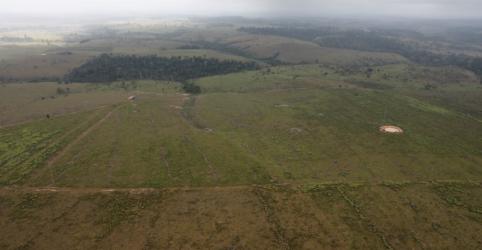 Placeholder - loading - Imagem da notícia ANÁLISE-Brasil reduz orçamento de combate a mudanças climáticas enquanto desmatamento cresce
