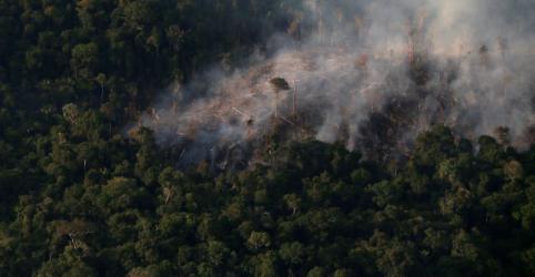 Placeholder - loading - EXCLUSIVO–Estados da Amazônia aceleram combate ao desmatamento com recursos recuperados na Lava Jato