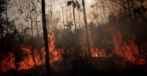 Placeholder - loading - EXCLUSIVO–Investidores europeus ameaçam desinvestir no Brasil devido a desmatamento