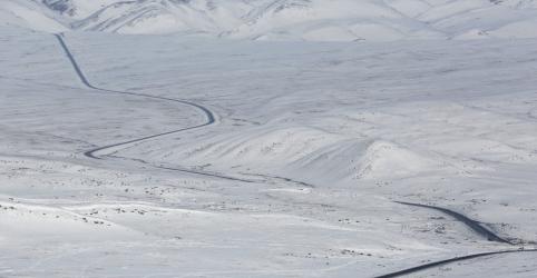 Placeholder - loading - Imagem da notícia Agência meteorológica da ONU estuda relatos 'preocupantes' sobre calor recorde no Ártico