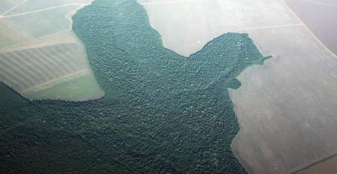 Placeholder - loading - Imagem da notícia Mourão diz que é preciso titular terras na Amazônia para acabar com jogo de gato e rato