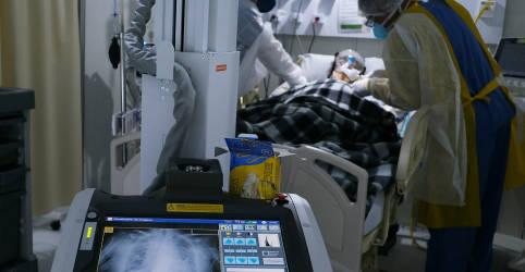 Placeholder - loading - Imagem da notícia Brasil registra 45.305 novos casos de coronavírus; total de mortes chega a 66.741