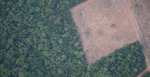 Placeholder - loading - Imagem da notícia Brasil precisa de resultado concreto na queda do desmatamento, diz Mourão após reunião com empresários
