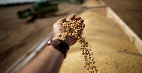 Placeholder - loading - Imagem da notícia Brasil terá safra recorde de 278,7 mi t em 20/21 puxada por soja e milho, diz Conab