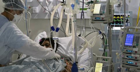 Placeholder - loading - Imagem da notícia Brasil atinge 117.666 mortes por coronavírus 6 meses após primeiro caso