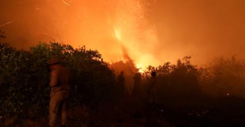 Placeholder - loading - Com queimadas em alta, Pantanal pega fogo acima e abaixo da terra