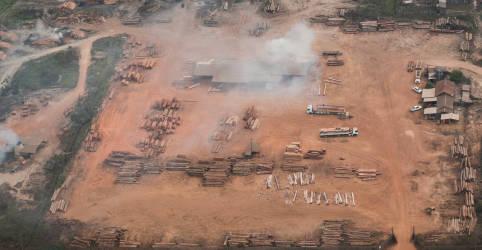 Placeholder - loading - Mapear crimes ambientais é essencial para frear perda da floresta amazônica, diz estudo