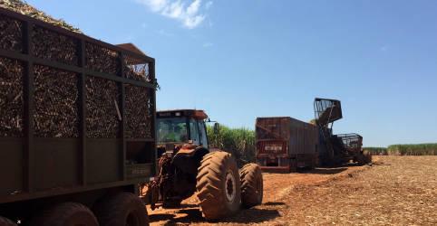 Placeholder - loading - Imagem da notícia Preços ao produtor no Brasil aceleram alta em julho ao nível mais alto da série histórica