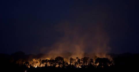 Placeholder - loading - EXCLUSIVO-Dados de queimadas na Amazônia precisam ser corrigidos; provavelmente foi pior mês de agosto em 10 anos