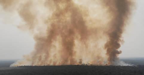 Placeholder - loading - Com queimadas intensas na Amazônia e no Pantanal, fumaça chega no Sul e Sudeste