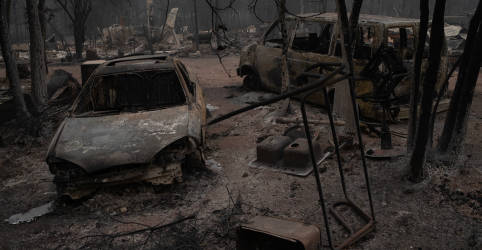 Placeholder - loading - Imagem da notícia Incêndios florestais em Oregon forçam desocupação em massa, mudança do clima traz alguma esperança