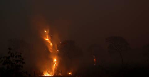 Placeholder - loading - Imagem da notícia PF faz operação para encontrar responsáveis por queimadas no Pantanal