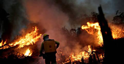 Placeholder - loading - Imagem da notícia Amazônia tem piores queimadas em uma década, mostram números