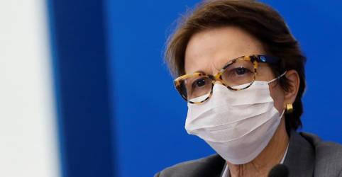 Placeholder - loading - Ministra Tereza Cristina diz que não tem nada de concreto sobre candidatura à Presidência da Câmara