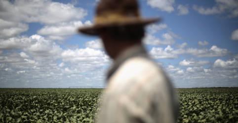 Placeholder - loading - Imagem da notícia Chuva ainda é insuficiente para plantio de soja 2020/21 deslanchar no Brasil