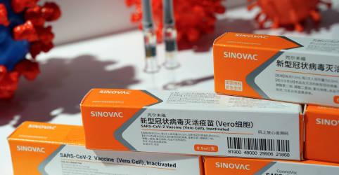 Placeholder - loading - Imagem da notícia Anvisa autoriza importação de matéria-prima para fabricação da CoronaVac pelo Butantan