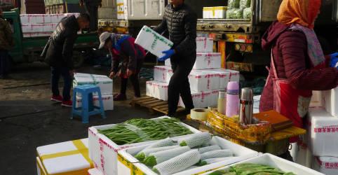 Placeholder - loading - Recuperação do setor de serviços da China se fortalece em outubro, mostra PMI do Caixin
