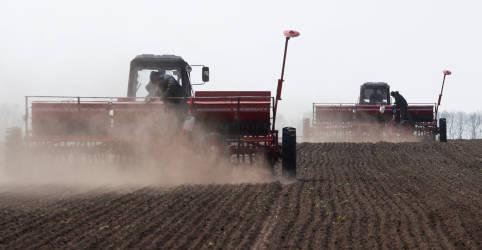 Placeholder - loading - Plantio de soja de MT dispara em novembro e chega perto do final, aponta Imea