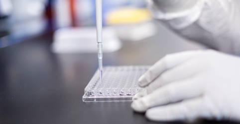 Placeholder - loading - Imagem da notícia UE fecha acordo para 160 milhões de doses de vacina contra Covid-19 da Moderna