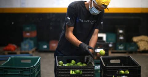 Placeholder - loading - Imagem da notícia Alimentos pressionam e preços ao produtor no Brasil têm em outubro maior alta da série