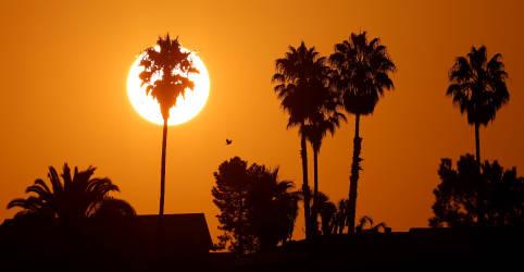 Placeholder - loading - Ano de 2020 poderá ser 2º mais quente da história, diz ONU