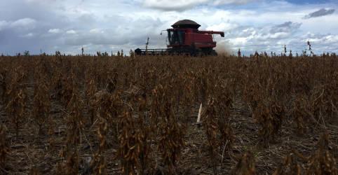 Placeholder - loading - Imagem da notícia Aprosoja reduz projeção de safra 20/21 de soja no Brasil para 127 mi t