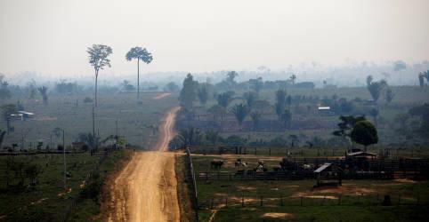 Placeholder - loading - Imagem da notícia Ex-ministros da Fazenda e ex-presidentes do BC pedem responsabilidade ambiental na retomada